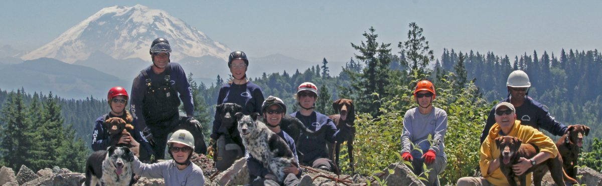Northwest Disaster Search Dogs